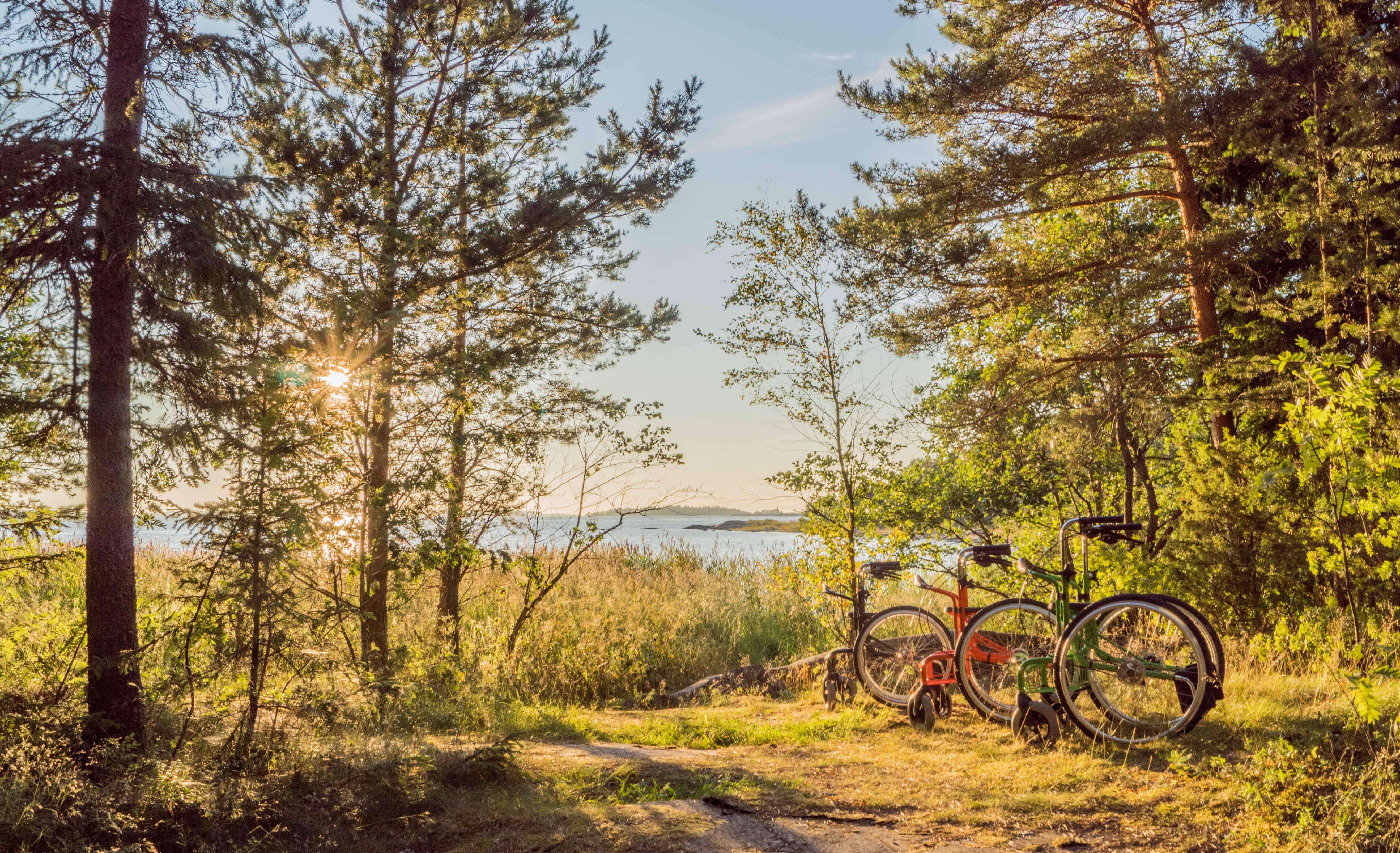 Wheellator_kuvaus_Maanpää_1_p
